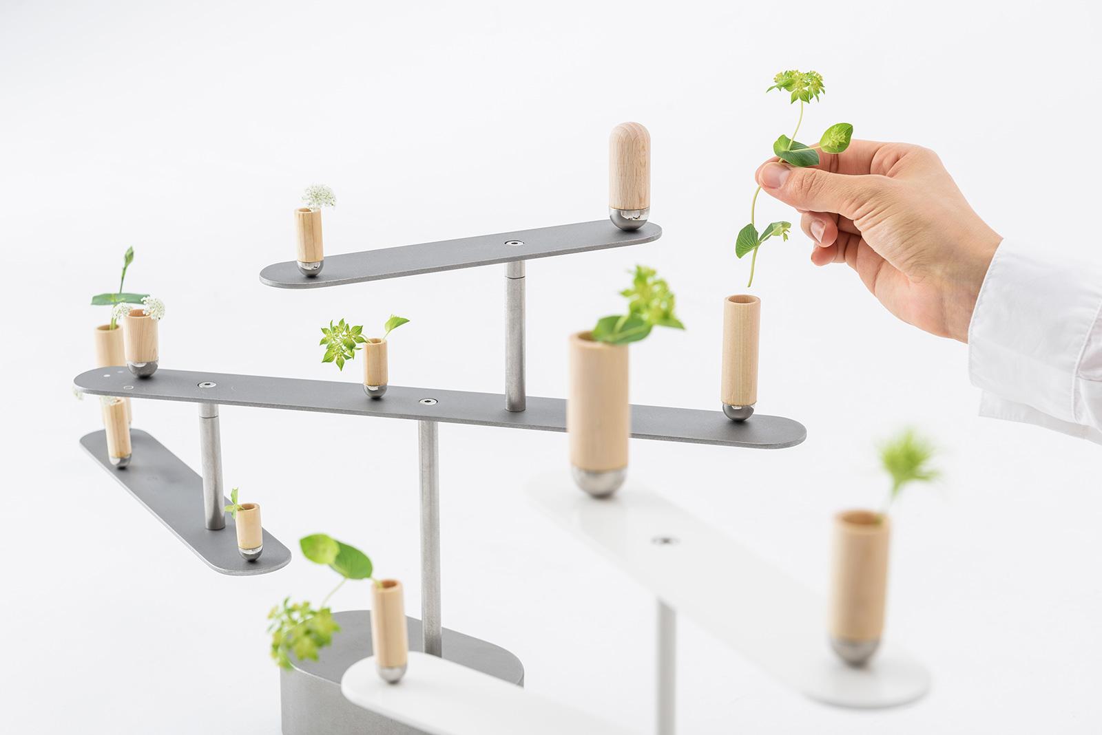06meta-bonsai1600